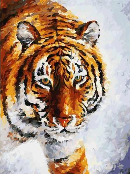 780-АS Тигр на снегу - раскраска (Белоснежка)