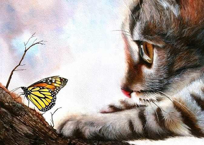 Ag415 - Игры с бабочкой - мозаика
