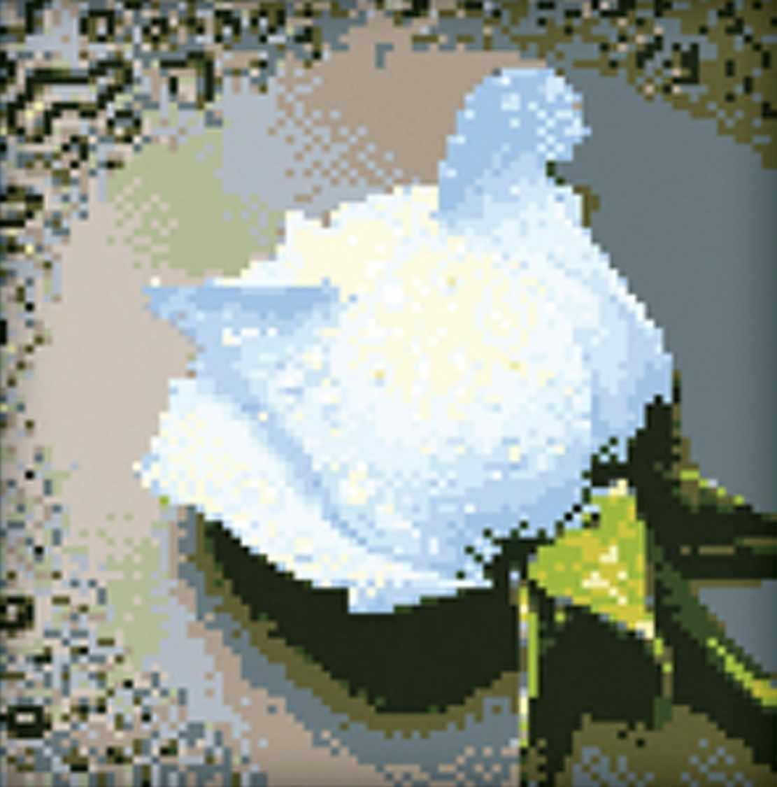 Белая роза (АЖ-24) - картина стразами
