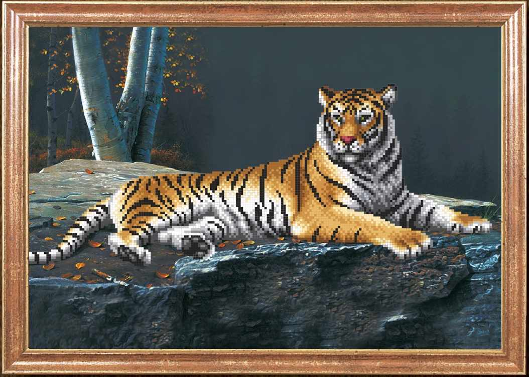 КС-048 Ночной тигр - Магия канвы