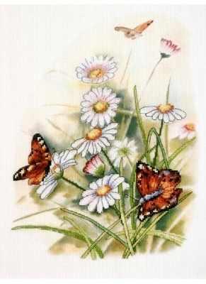 OR 8231 Ромашки и бабочки