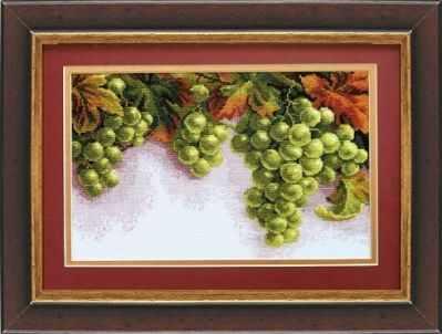 445 Грозди винограда  - чм