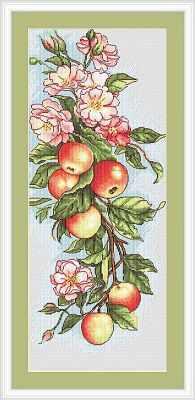 B211 Композиция с яблоками