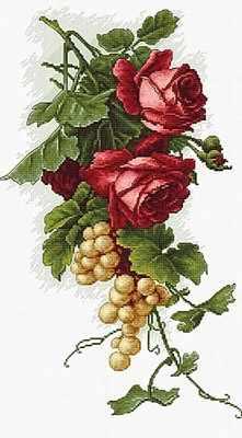B2229 Красные розы с виноградом