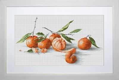 B2255 Спокойная жизнь с мандаринами