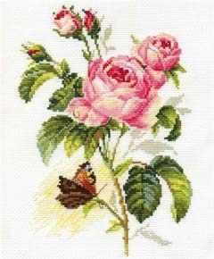 2-13 Роза и бабочка