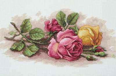13720 DMS Срезанные розы