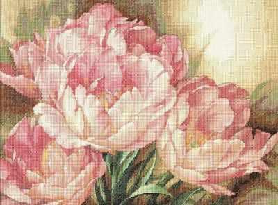 35175 DMS Трио тюльпанов