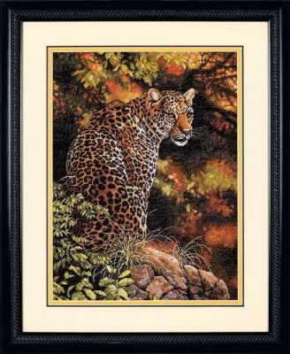 35209 DMS Пристальный взгляд леопарда