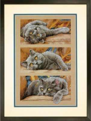 35301-70 DMS Max The Cat