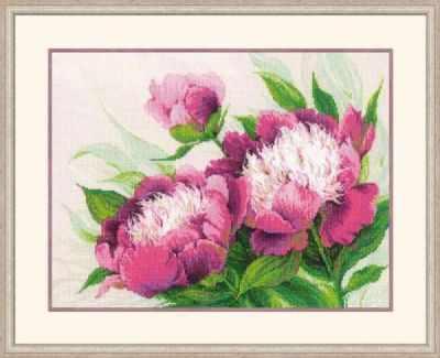 Набор для вышивания Риолис (Сотвори Сама) 100/039 Розовые пионы риолис набор для вышивания 1775 розовые маки