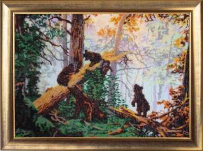 Купить со скидкой 594 Утро в сосновом лесу - Butterfly