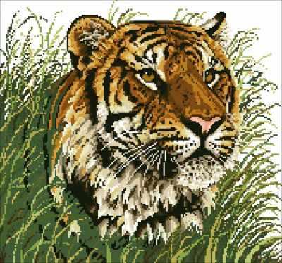 Уссурийский тигр (АЖ-485) - картина стразами