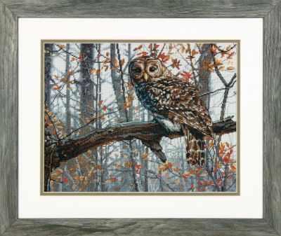 Набор для вышивания Dimensions 35311-70-DMS Wise Owl
