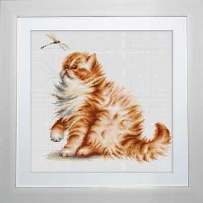B2270 Кошка со стрекозой