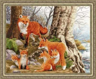 ДЖ-036 Рыжая семейка. Дикие животные