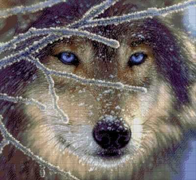 26-1901-НВ Волк  набор для вышивания (А. Токарева) - Наборы для вышивания Александры Токаревой
