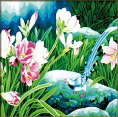 MP008 Цветы среди камней  раскраска (Menglei) - Наборы для раскрашивания по номерам «Menglei»