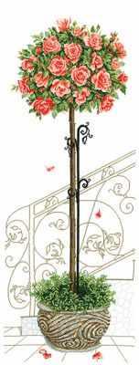 Купить со скидкой Р-17 Розовое дерево