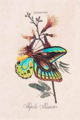 Набор для вышивания Матрёнин Посад 5514/ГЛ Сад бабочек - набор для вышивания