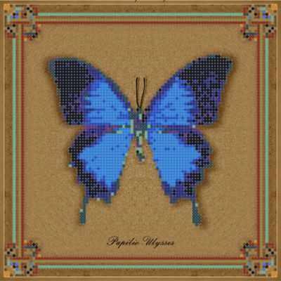 1Нбис-014арт коллекция бабочек  Papilio Ulysses  набор - Наборы для вышивания «Художественные мастерские»