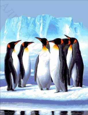 30-2760-НП Пингвины  набор для вышивания (А. Токарева) - Наборы для вышивания Александры Токаревой