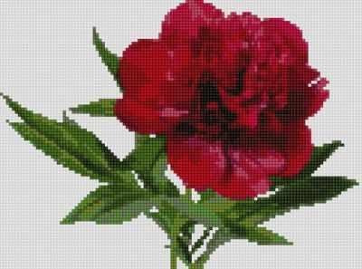 50123 Красный пион  мозаика Anya - Мозаика «Anya»