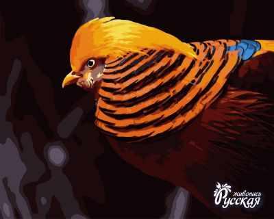 Набор для раскрашивания по номерам Русская живопись H026 Золотой фазан