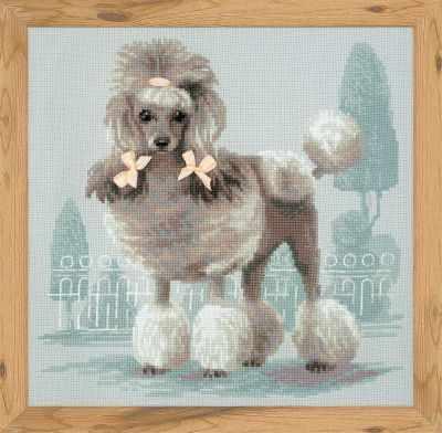 1635  Малый пудель  - Наборы для вышивания «Риолис»