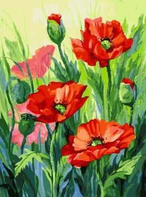 Набор для рисования по номерам Белоснежка 155-AS Красные маки - раскраска (Белоснежка)
