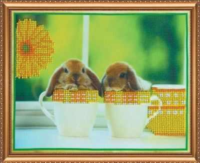АВ-011 Кролики 1