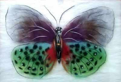 SH031 Бабочка  Баттерфляй  - Товары для валяния (фелтинга)