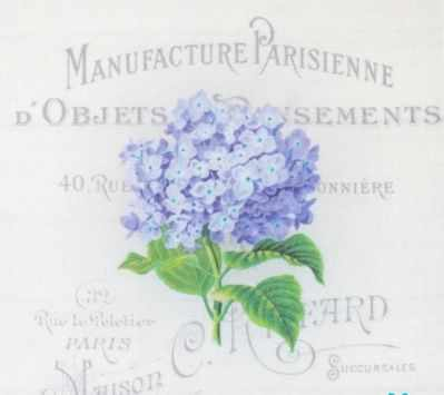 AM650005 Купон с рисунком Гортензия  синяя на сером фоне