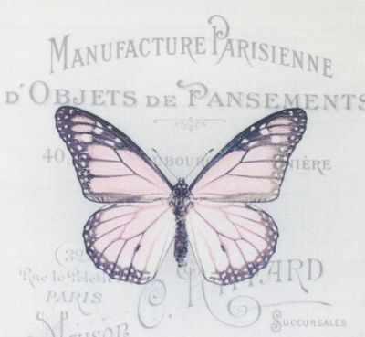 AM650007 Купон с рисунком Бабочка розовая на сером фоне