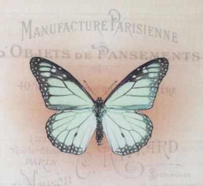 AM650014 Купон с рисунком Бабочка зеленая на бежевом фоне