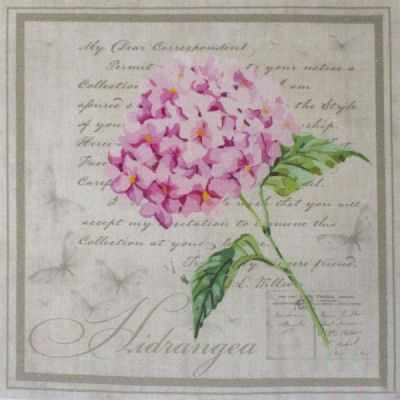 AM650015 Купон с рисунком Гортензия розовая в рамке