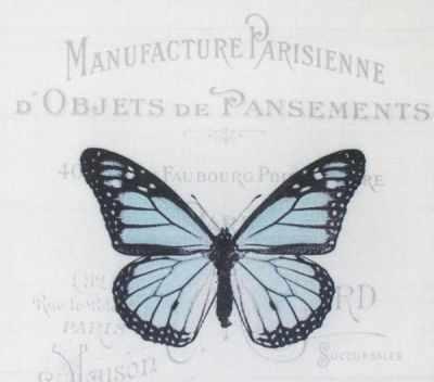 AM650008 Купон с рисунком Бабочка синяя на сером фоне