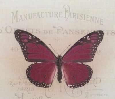 AM650013 Купон с рисунком Бабочка малиновая на бежевом фоне