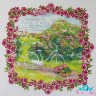 AM650016 Купон с рисунком Винтажный велосипед в рамке из роз