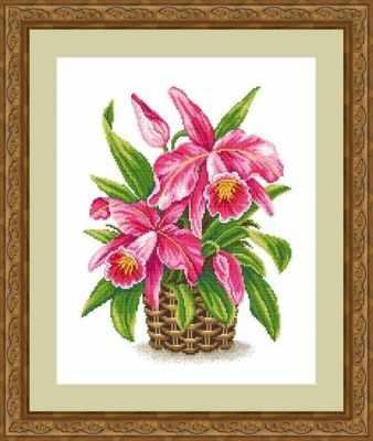 ЦВ-052 (Королева тропиков) - Наборы для вышивки крестом «Сделано с любовью»