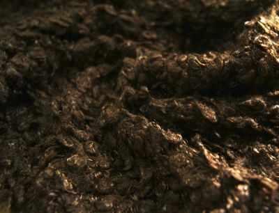 КЛ.24889 Мех  Кудрявый  цв.т.коричневый - Ткани