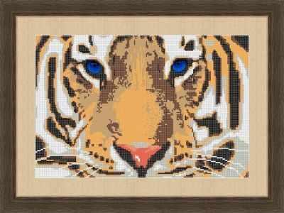 КАЮ3018 Взгляд тигра