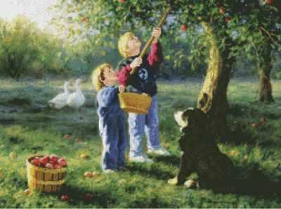 52431 Нет ничего лучше яблок джонатан - Наборы для вышивания крестом «Candamar»
