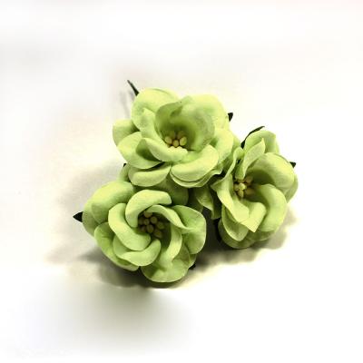 FD3123161 Цветы Дикие Розы светло-зеленые