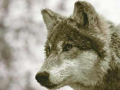 ALV-4 Кристальная мозаика (алмазная вышивка) 03  Волк  - Мозаика «ФРЕЯ»
