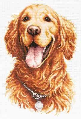 59-24 Золотистый ретривер - Наборы для вышивания «Чудесная игла»