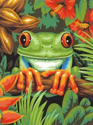 91617 DMS  Древесная лягушка   раскраска - Картины по номерам «Dimensions»