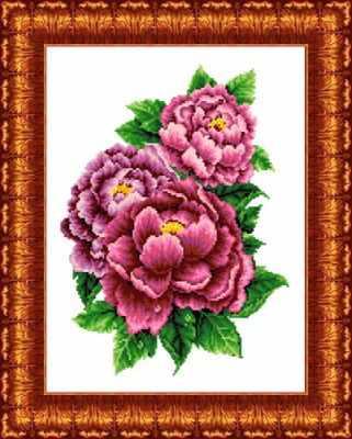 кк 025 Розовые пионы - схема (Каролинка)