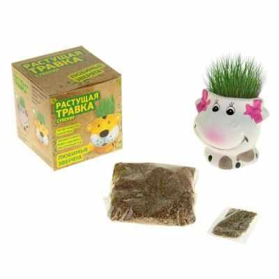 611221 Растущая трава Бурёнка
