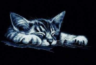 958  Мой котёнок  - Наборы для вышивания крестиком «HobbyPro»